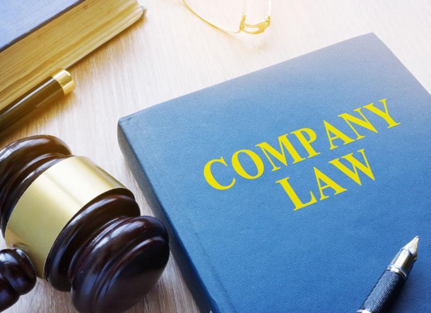 DPA30083 - COMPANY LAW